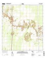 Deep Lake Florida Current topographic map, 1:24000 scale, 7.5 X 7.5 Minute, Year 2015 from Florida Map Store