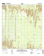 Deep Lake SW Florida Current topographic map, 1:24000 scale, 7.5 X 7.5 Minute, Year 2015 from Florida Map Store