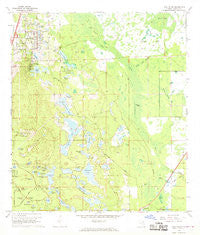 Lake Helen Florida Historical topographic map, 1:24000 scale, 7.5 X 7.5 Minute, Year 1966