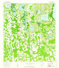 Lake Nellie Florida Historical topographic map, 1:24000 scale, 7.5 X 7.5 Minute, Year 1959