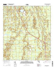 Lebanon Station Florida Current topographic map, 1:24000 scale, 7.5 X 7.5 Minute, Year 2015 from Florida Maps Store