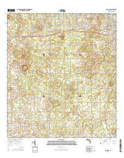 Lecanto Florida Current topographic map, 1:24000 scale, 7.5 X 7.5 Minute, Year 2015 from Florida Maps Store