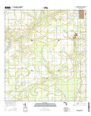 Myakka City NW Florida Current topographic map, 1:24000 scale, 7.5 X 7.5 Minute, Year 2015 from Florida Maps Store