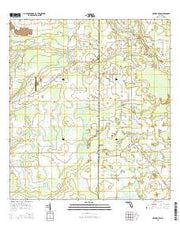 Myakka Head Florida Current topographic map, 1:24000 scale, 7.5 X 7.5 Minute, Year 2015 from Florida Maps Store