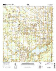 Old Myakka Florida Current topographic map, 1:24000 scale, 7.5 X 7.5 Minute, Year 2015 from Florida Maps Store