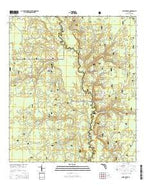 Smith Creek Florida Current topographic map, 1:24000 scale, 7.5 X 7.5 Minute, Year 2015 from Florida Map Store