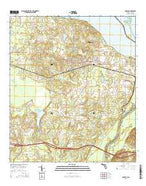 Sneads Florida Current topographic map, 1:24000 scale, 7.5 X 7.5 Minute, Year 2015 from Florida Map Store