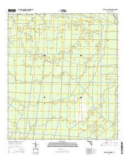 Tates Hell Swamp Florida Current topographic map, 1:24000 scale, 7.5 X 7.5 Minute, Year 2015 from Florida Maps Store