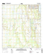 Venus NW Florida Current topographic map, 1:24000 scale, 7.5 X 7.5 Minute, Year 2015 from Florida Map Store