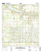 Verna Florida Current topographic map, 1:24000 scale, 7.5 X 7.5 Minute, Year 2015 from Florida Map Store