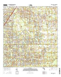 Wesley Chapel Florida Current topographic map, 1:24000 scale, 7.5 X 7.5 Minute, Year 2015