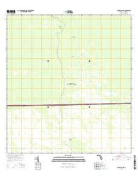 Whidden Lake Florida Current topographic map, 1:24000 scale, 7.5 X 7.5 Minute, Year 2015