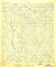 Williston Florida Historical topographic map, 1:62500 scale, 15 X 15 Minute, Year 1895