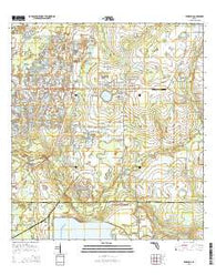 Wimauma Florida Current topographic map, 1:24000 scale, 7.5 X 7.5 Minute, Year 2015