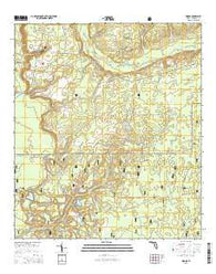 Woods Florida Current topographic map, 1:24000 scale, 7.5 X 7.5 Minute, Year 2015