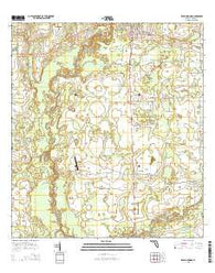Zolfo Springs Florida Current topographic map, 1:24000 scale, 7.5 X 7.5 Minute, Year 2015