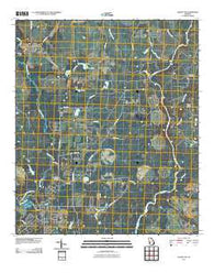 Albany NE Georgia Historical topographic map, 1:24000 scale, 7.5 X 7.5 Minute, Year 2011
