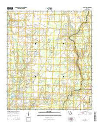 Albany NE Georgia Current topographic map, 1:24000 scale, 7.5 X 7.5 Minute, Year 2014