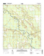 Bug Island Georgia Current topographic map, 1:24000 scale, 7.5 X 7.5 Minute, Year 2014 from Georgia Maps Store
