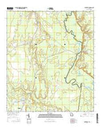 Burnt Fort Georgia Current topographic map, 1:24000 scale, 7.5 X 7.5 Minute, Year 2014 from Georgia Map Store