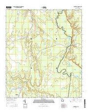 Burnt Fort Georgia Current topographic map, 1:24000 scale, 7.5 X 7.5 Minute, Year 2014 from Georgia Maps Store