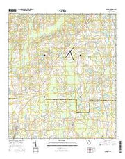 Coolidge Georgia Current topographic map, 1:24000 scale, 7.5 X 7.5 Minute, Year 2014 from Georgia Maps Store
