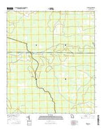 Thelma Georgia Current topographic map, 1:24000 scale, 7.5 X 7.5 Minute, Year 2014 from Georgia Map Store