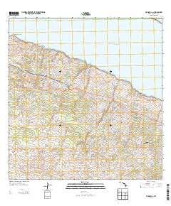 Honokaa Hawaii Historical topographic map, 1:24000 scale, 7.5 X 7.5 Minute, Year 2013