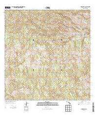 Piihonua Hawaii Historical topographic map, 1:24000 scale, 7.5 X 7.5 Minute, Year 2013