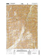 Badger Spring Gulch Idaho Current topographic map, 1:24000 scale, 7.5 X 7.5 Minute, Year 2013 from Idaho Map Store