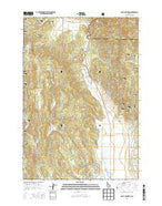 Bally Mountain Idaho Current topographic map, 1:24000 scale, 7.5 X 7.5 Minute, Year 2013 from Idaho Map Store
