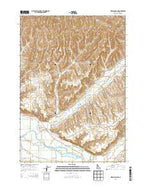 Birding Island Idaho Current topographic map, 1:24000 scale, 7.5 X 7.5 Minute, Year 2013 from Idaho Map Store