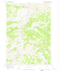 Bowery Creek Idaho Historical topographic map, 1:24000 scale, 7.5 X 7.5 Minute, Year 1963