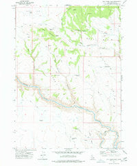 Bull Basin Camp Idaho Historical topographic map, 1:24000 scale, 7.5 X 7.5 Minute, Year 1977