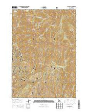 Cayuse Point Idaho Current topographic map, 1:24000 scale, 7.5 X 7.5 Minute, Year 2013 from Idaho Maps Store