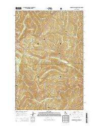 Chamberlain Mountain Idaho Current topographic map, 1:24000 scale, 7.5 X 7.5 Minute, Year 2014