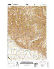 Ennis Gulch Idaho Current topographic map, 1:24000 scale, 7.5 X 7.5 Minute, Year 2013 from Idaho Maps Store