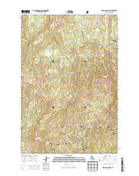 French Mountain Idaho Current topographic map, 1:24000 scale, 7.5 X 7.5 Minute, Year 2014