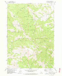 Garns Mtn Idaho Historical topographic map, 1:24000 scale, 7.5 X 7.5 Minute, Year 1978