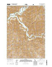 Grape Mountain Idaho Current topographic map, 1:24000 scale, 7.5 X 7.5 Minute, Year 2013 from Idaho Maps Store