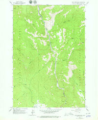 Indian Mountain Idaho Historical topographic map, 1:24000 scale, 7.5 X 7.5 Minute, Year 1963