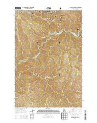 Junction Mountain Idaho Current topographic map, 1:24000 scale, 7.5 X 7.5 Minute, Year 2014