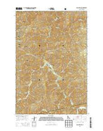 Lean-to Point Idaho Current topographic map, 1:24000 scale, 7.5 X 7.5 Minute, Year 2013 from Idaho Map Store