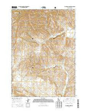 Richardson Summit Idaho Current topographic map, 1:24000 scale, 7.5 X 7.5 Minute, Year 2013 from Idaho Maps Store