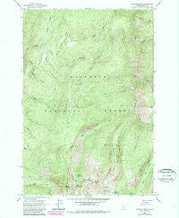 Sawyer Ridge Idaho Historical topographic map, 1:24000 scale, 7.5 X 7.5 Minute, Year 1963