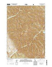 Thompson Peak Idaho Current topographic map, 1:24000 scale, 7.5 X 7.5 Minute, Year 2013 from Idaho Maps Store
