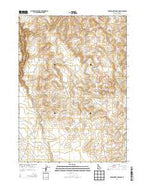 Wickahoney Crossing Idaho Current topographic map, 1:24000 scale, 7.5 X 7.5 Minute, Year 2013 from Idaho Map Store