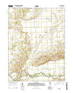 Biggs Illinois Current topographic map, 1:24000 scale, 7.5 X 7.5 Minute, Year 2015 from Illinois Map Store
