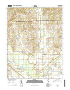 Birds Illinois Current topographic map, 1:24000 scale, 7.5 X 7.5 Minute, Year 2015 from Illinois Map Store