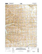 Boone Branch Illinois Current topographic map, 1:24000 scale, 7.5 X 7.5 Minute, Year 2015 from Illinois Map Store
